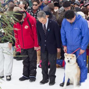 2014「犬っこまつり」愛犬祈願祭 玉串奉奠