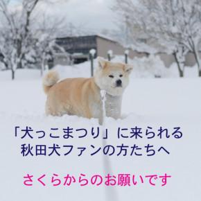 「犬っこまつり」に来られる方たちへ