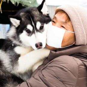 2014「犬っこまつり」出会ったワン子たち